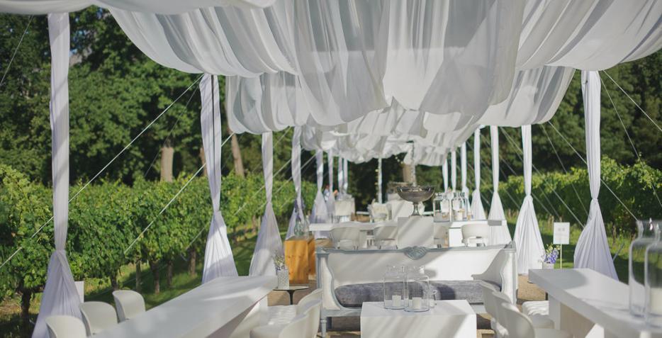 Two Chefs, Molenvliet, Winelands Wedding, Molenvliet, Stellenbosch, W.Collaboration, Wedding, Neo & Mosa, Okasie